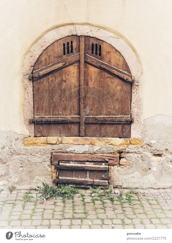 crafts | ventilation technology Old town Wall (barrier) Wall (building) Stairs Facade Door Stone Wood Esthetic Authentic Historic Arch Gate Cobblestones Alsace
