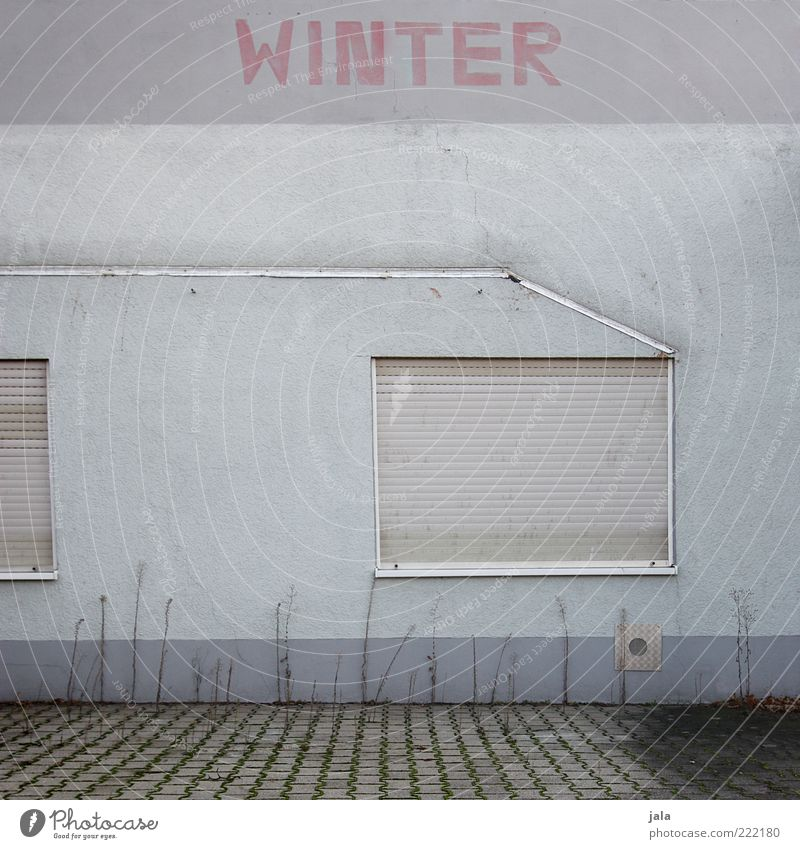 winter Manmade structures Building Architecture Wall (barrier) Wall (building) Facade Window Roller shutter Characters Gloomy Gray Winter Word Colour photo