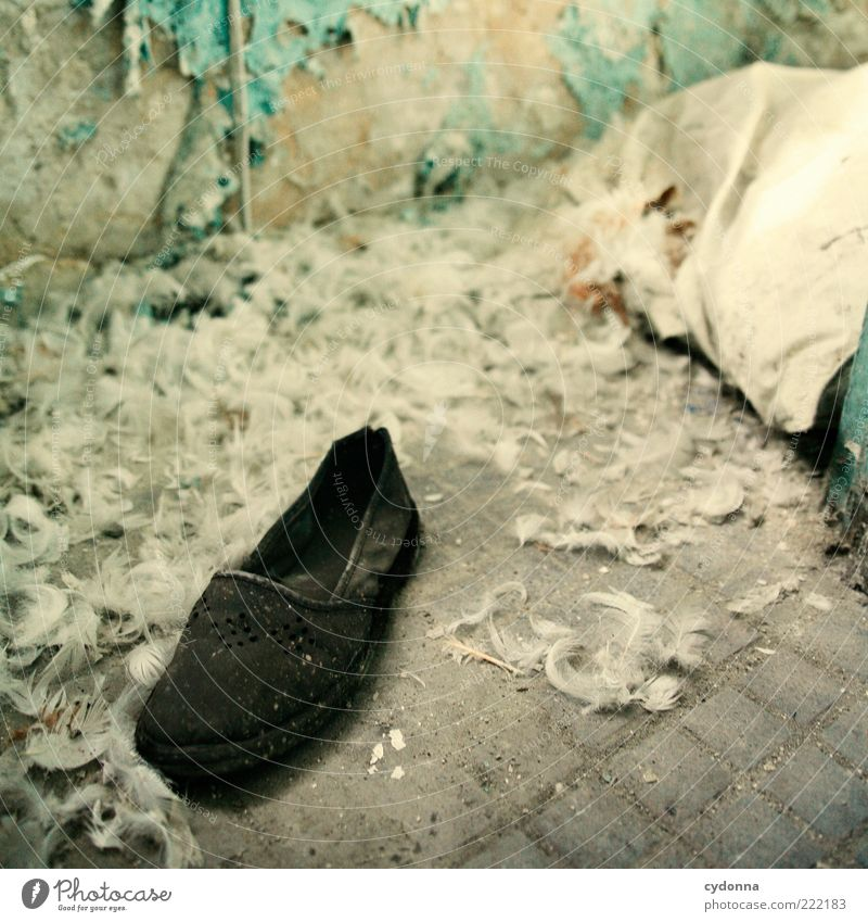 Calm Loneliness Life Death Footwear Room Time Esthetic Broken Change Feather Living or residing Transience Uniqueness Mysterious Decline