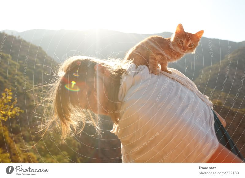 Woman Human being Youth (Young adults) Joy Summer Animal Life Feminine Happy Cat Baby animal Small Adults Back Sit Kitsch