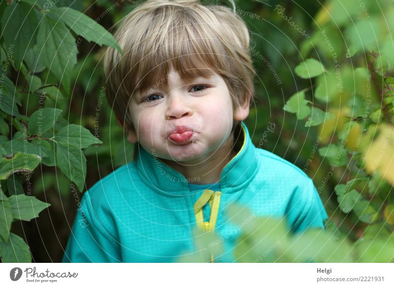 Portrait of a little boy pulling a pout Human being Masculine Child Boy (child) Infancy Head Hair and hairstyles Face 1 3 - 8 years Environment Nature Plant