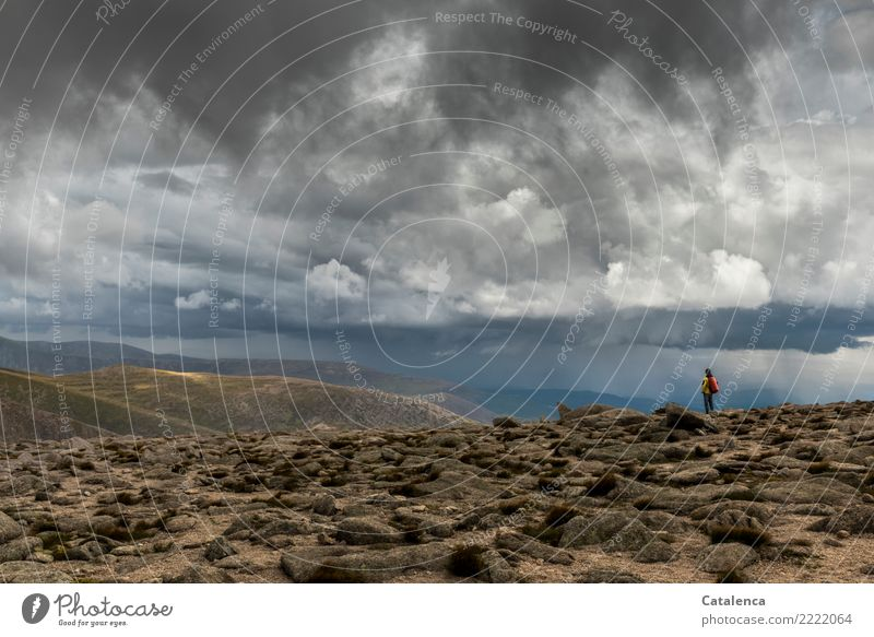 Weather front in the mountains Masculine 1 Human being Landscape Storm clouds Horizon Summer Bad weather Rain Thunder and lightning Moss Hill Mountain Observe