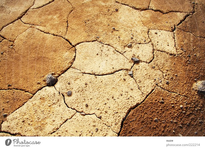 Nature Loneliness Environment Landscape Brown Earth Climate Future Ground Desert Dry Crack & Rip & Tear Drought Dried Climate change Sparse