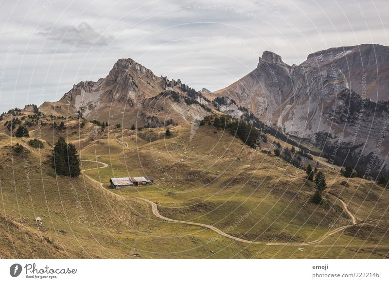 Myny plate Environment Nature Landscape Summer Beautiful weather Alps Mountain Peak Exceptional Vantage point Switzerland Tourism Hiking Hiking trip
