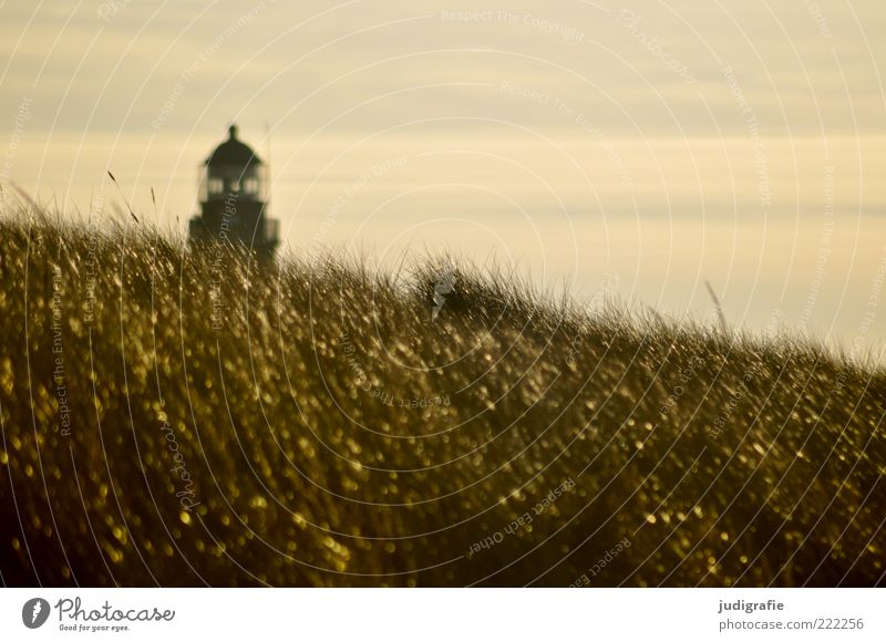 western beach Environment Nature Landscape Sky Sunlight Climate Grass Coast Baltic Sea Lighthouse Manmade structures Natural Beautiful Gold Moody