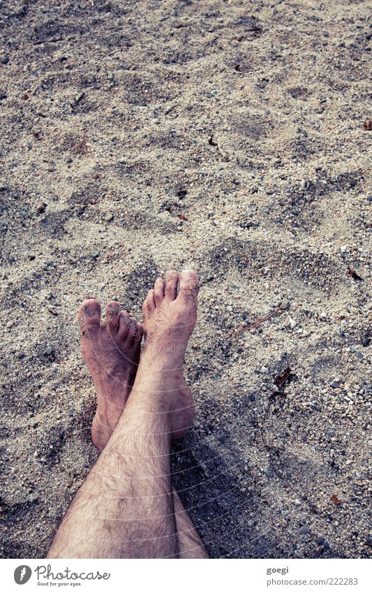 0oooo oooo0 Masculine Legs Feet Sand Beach Relaxation Vacation & Travel Hair Toes Colour photo Exterior shot Copy Space top Barefoot Copy Space right Day