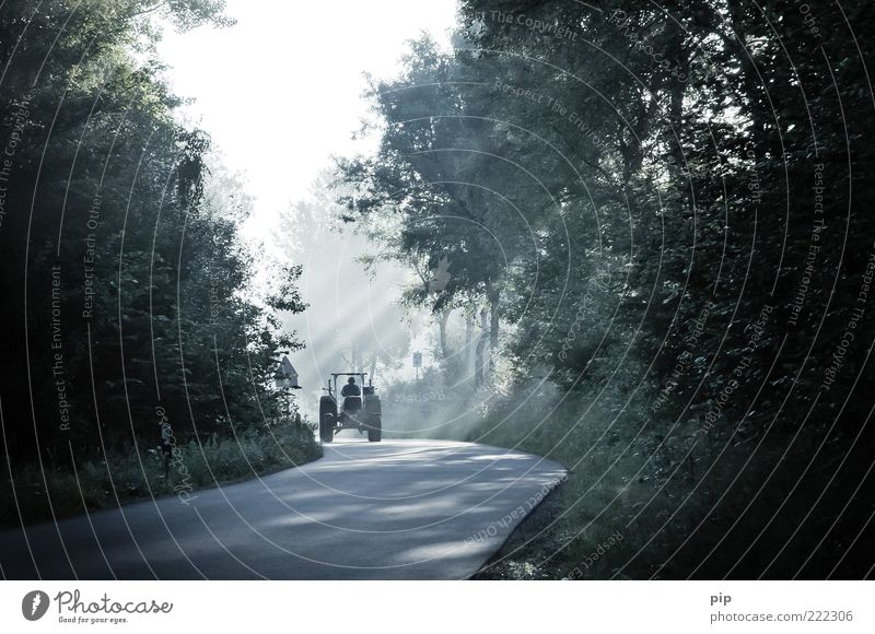 trekking Man Adults 1 Human being Summer Beautiful weather Tree Forest Street Country road Curve Tractor Driving Dark Fresh Bright Diligent Calm Frictionless