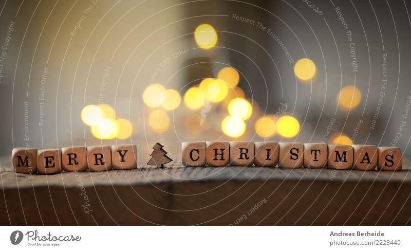 Christmas & Advent Winter Feasts & Celebrations Together Decoration Happiness Romance Anticipation