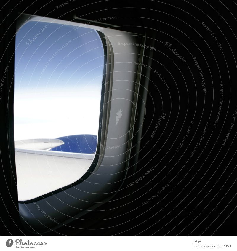 inside/outside Sky Clouds Beautiful weather Window Aviation Airplane Passenger plane In the plane View from the airplane Flying Vacation & Travel Far-off places