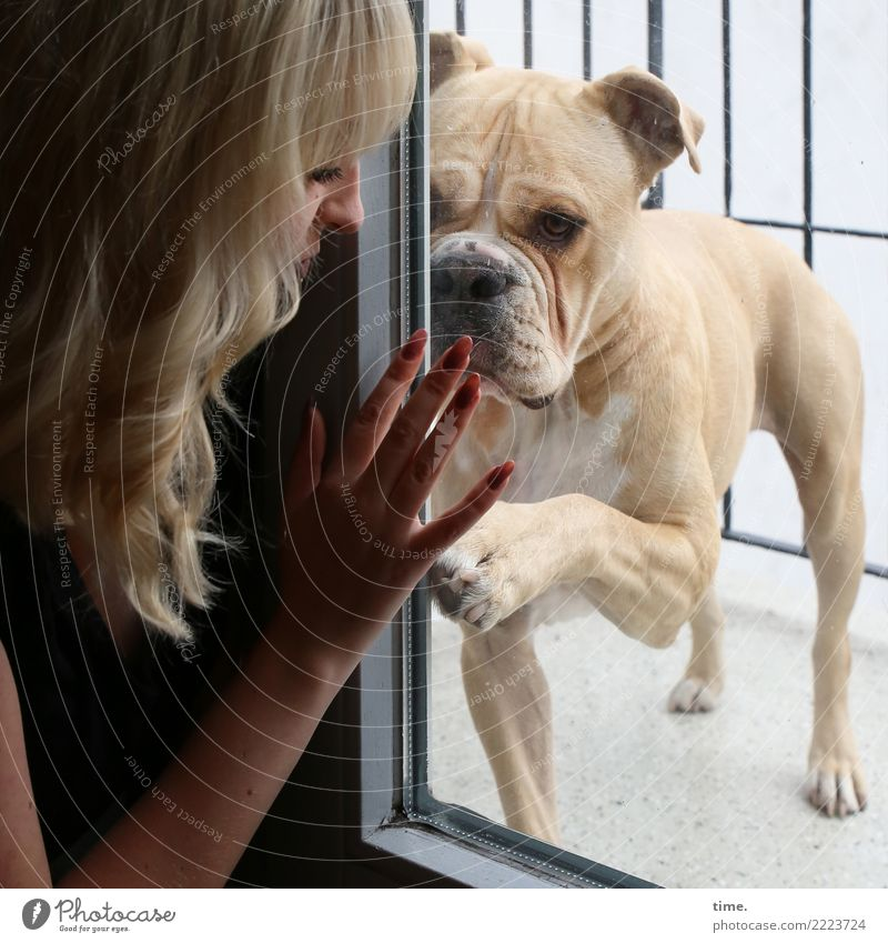 Lilly Room Balcony Glass door Feminine Woman Adults 1 Human being Blonde Long-haired Dog Animal Observe Communicate Warmth Willpower Passion Trust