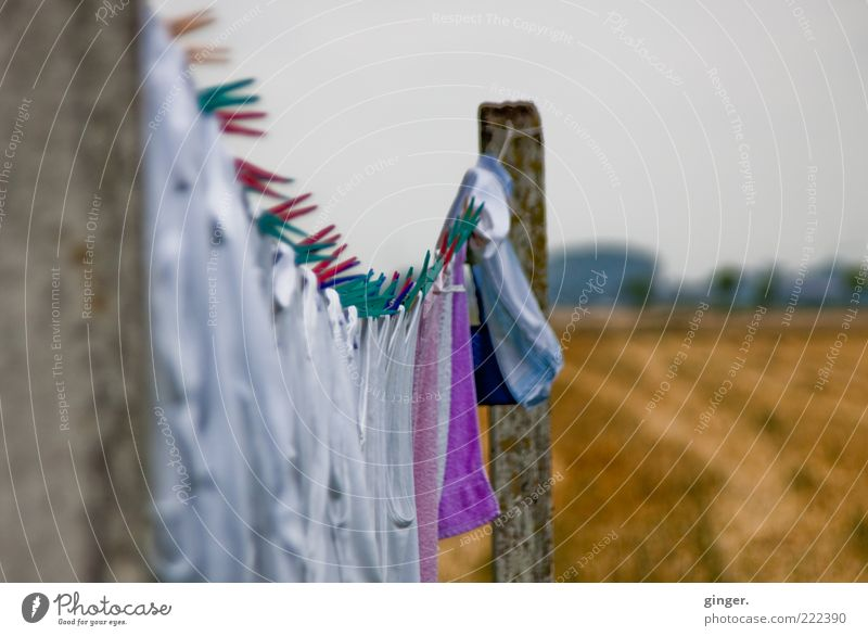 stapling Nature Bad weather Hang Dry Holder Clothes peg Pole Clothesline Laundry Fresh Laundered Field Clouds Covered Gray White Rural Summer Colour photo