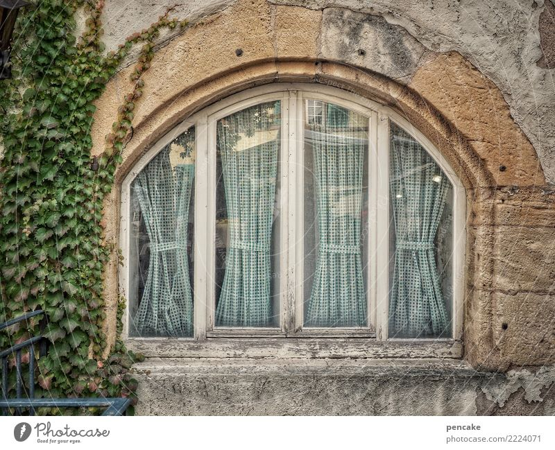 Build with swing Old town House (Residential Structure) Facade Window Historic Arch Ivy Alsace Colour photo Exterior shot Structures and shapes Deserted