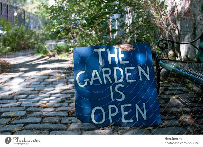 Green Blue Plant Wood Garden Gray Stone Metal Signs and labeling Open Characters Signage Cobblestones Word Clue New York City