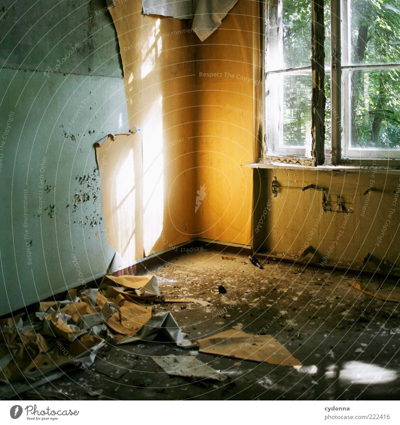 Old Calm House (Residential Structure) Wall (building) Window Wall (barrier) Room Time Planning Broken Change Transience Uniqueness Derelict Wallpaper Decline