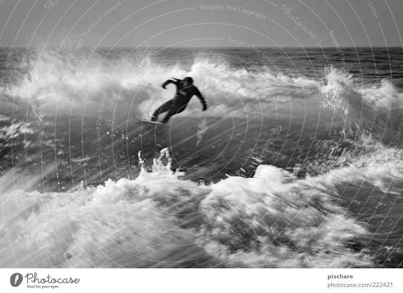Man Nature Water Ocean Waves Power Leisure and hobbies Masculine Esthetic Lifestyle Elements Exceptional Brave Passion Athletic Surfing