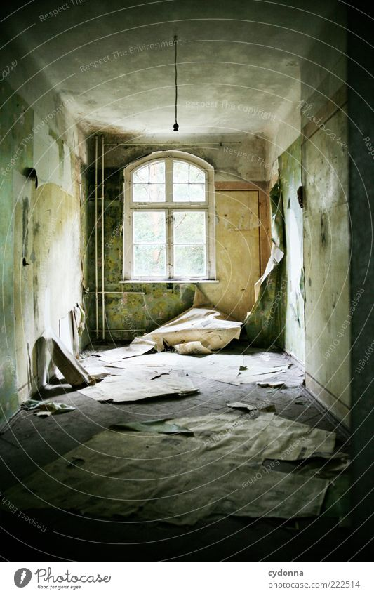 favourite room Wallpaper Room Wall (barrier) Wall (building) Window Uniqueness Apocalyptic sentiment Calm Stagnating Decline Past Transience Change Destruction