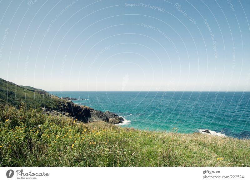 Nature Water Sky Green Blue Plant Summer Ocean Grass Landscape Coast Waves Environment Weather Horizon Rock
