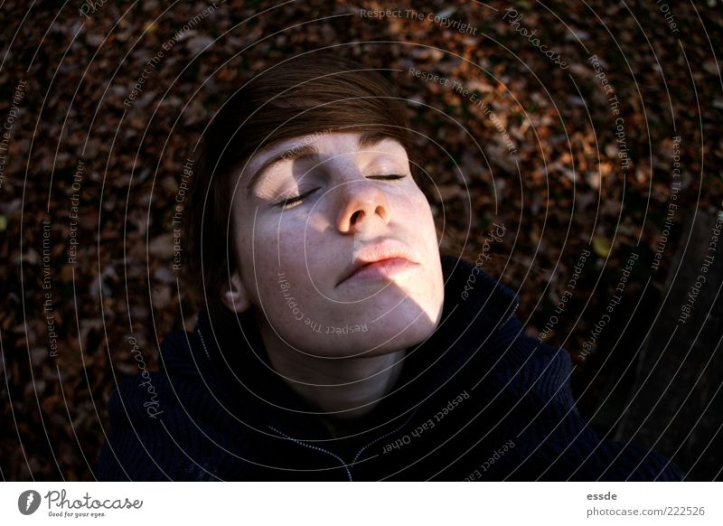 Face Calm Leaf Far-off places Relaxation Autumn Feminine Freedom Dream Moody Brown Power Contentment Fresh Break