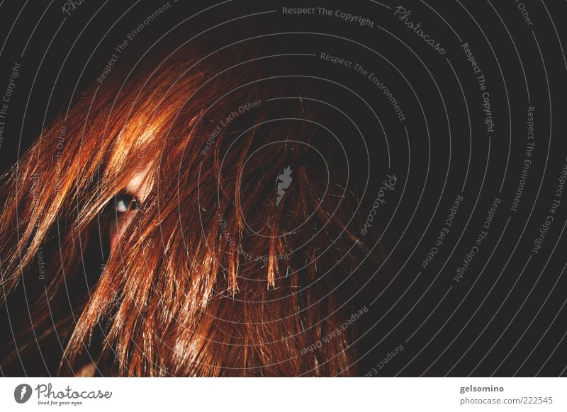 Face in hair Feminine Hair and hairstyles Eyes 1 Human being Red-haired Long-haired Brash Colour photo Interior shot Copy Space right Flash photo Looking