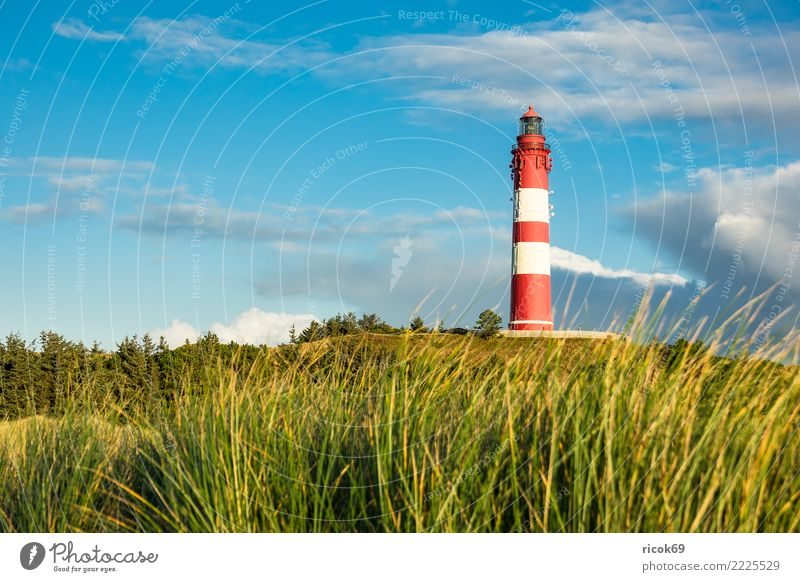 Lighthouse in Wittdün on the island Amrum Vacation & Travel Tourism Island Nature Landscape Clouds Autumn Coast North Sea Architecture Tourist Attraction
