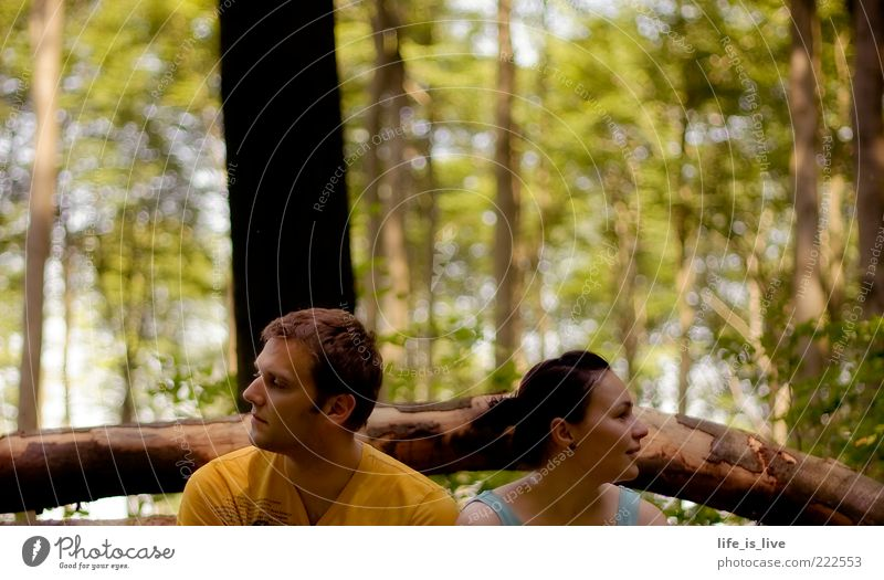 Woman Man Tree Summer Calm Forest Together Pair of animals Sit Longing Meditative Tree trunk Human being Plant Young woman To be silent