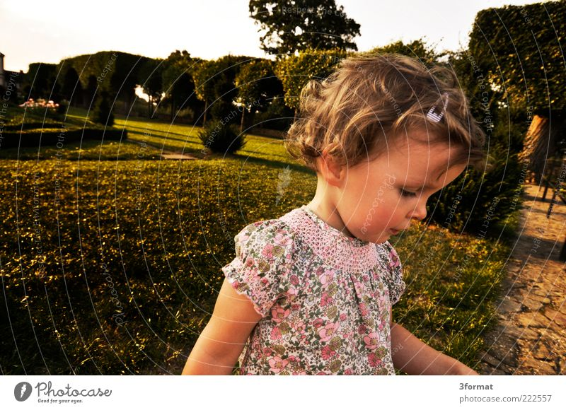 Human being Green Beautiful Girl Summer Face Yellow Meadow Life Landscape Playing Emotions Lanes & trails Head Small Garden