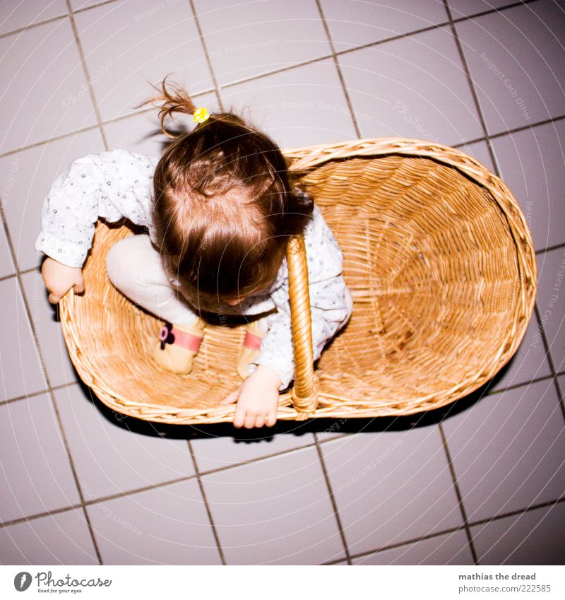 Hidden Joy Happy Playing Human being Baby Toddler Infancy 1 1 - 3 years Crouch Funny Curiosity Hide Basket Small Beautiful Tile Discover Cute Braids To hold on