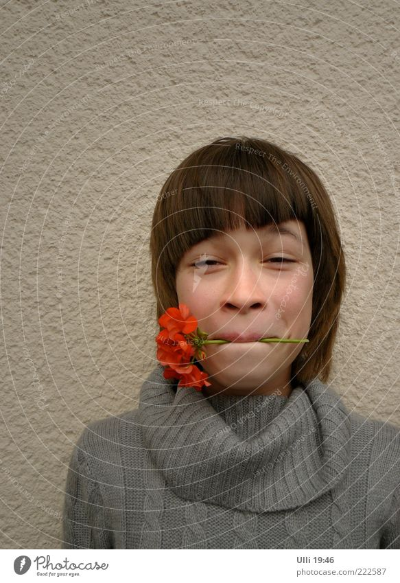 Child Youth (Young adults) Beautiful Flower Red Joy Girl Face Feminine Funny Gray Head Moody Fresh Infancy Stand