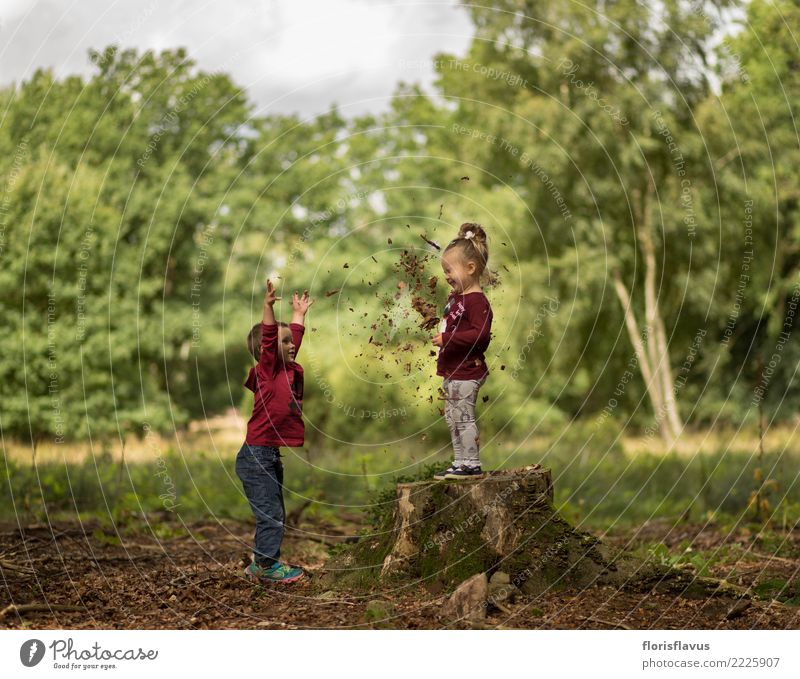 Child Human being Nature Vacation & Travel Green Landscape Joy Girl Forest Autumn Funny Natural Boy (child) Happy Playing Tourism