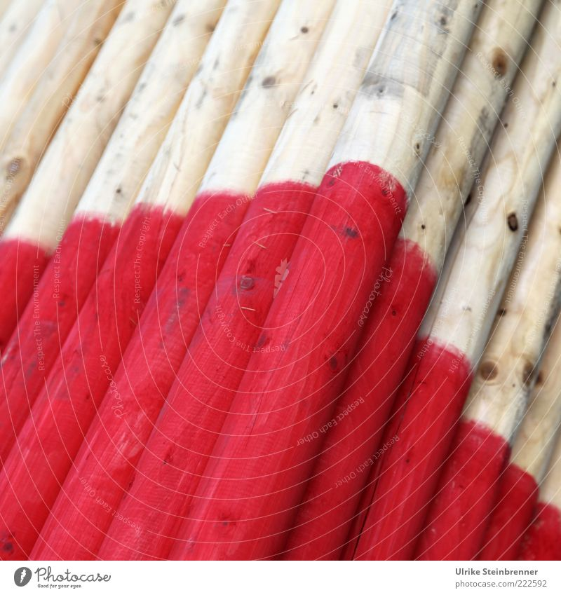 Red Wood Dye Signs and labeling Lie Many Tree trunk Stack Pole Varnish Measuring instrument Supply Wooden stake Playing Consecutively