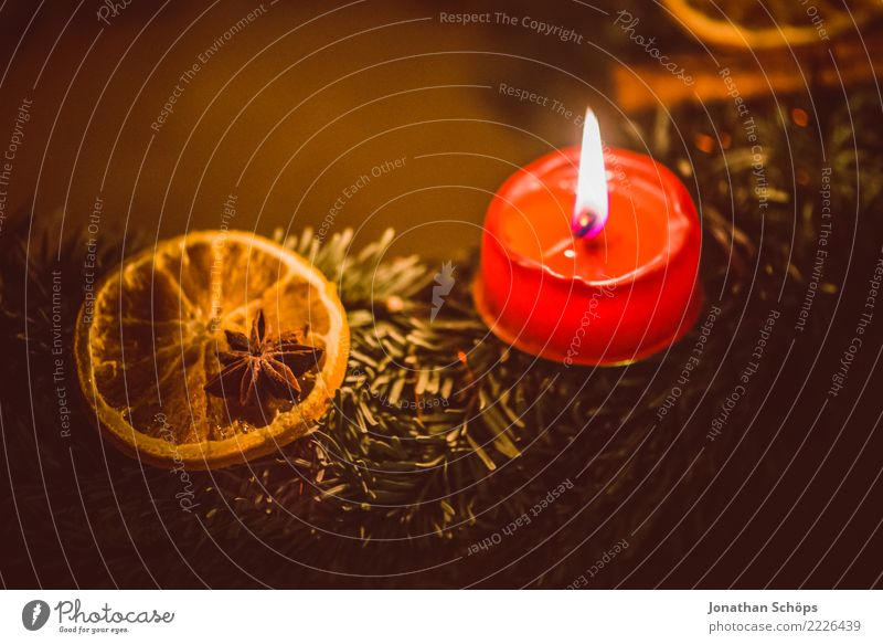 Christmas & Advent Red Warmth Lighting Moody Bright Living or residing Illuminate Decoration Hope Candle Well-being Meditation Tradition Burn Flame