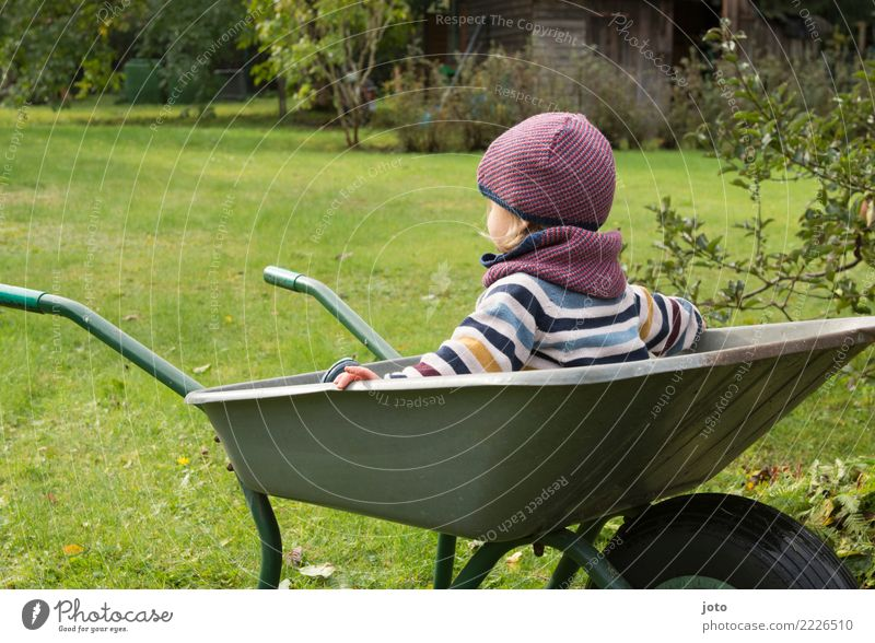 just sit Joy Contentment Leisure and hobbies Children's game Garden Gardening Toddler 1 - 3 years Autumn Meadow Sweater Cap Observe To enjoy Looking Sit Dream