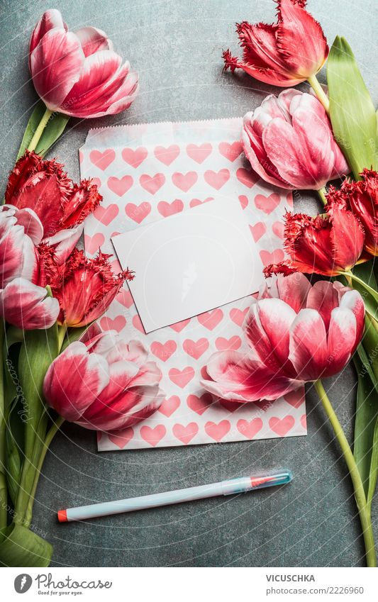 Plant Flower Red Life Spring Love Background picture Style Feasts & Celebrations Party Pink Design Decoration Birthday Heart Wedding