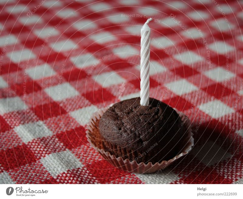 small chocolate cake with a candle on a red and white chequered tablecloth Food Dough Baked goods Cake Nutrition Decoration shoulder stand Stand Esthetic Simple