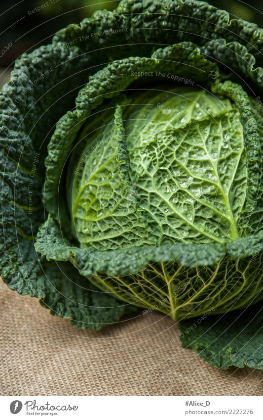 savoy cabbage Food Vegetable Lettuce Salad Cabbage Savoy cabbage Nutrition Organic produce Vegetarian diet Diet Lifestyle Healthy Fitness Winter Nature