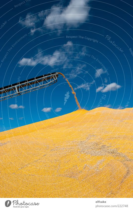 Corn Mountain Series, Shoot #3 Sky Blue Plant Clouds Yellow Autumn Environment Landscape Gray Art Field Gold Energy Large Climate Driving