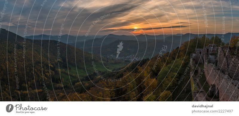 Palatinate Forest Tourism Sightseeing Mountain Hiking Nature Landscape Sky Clouds Horizon Sun Sunrise Sunset Autumn Weather Tree Hill Rock Peak
