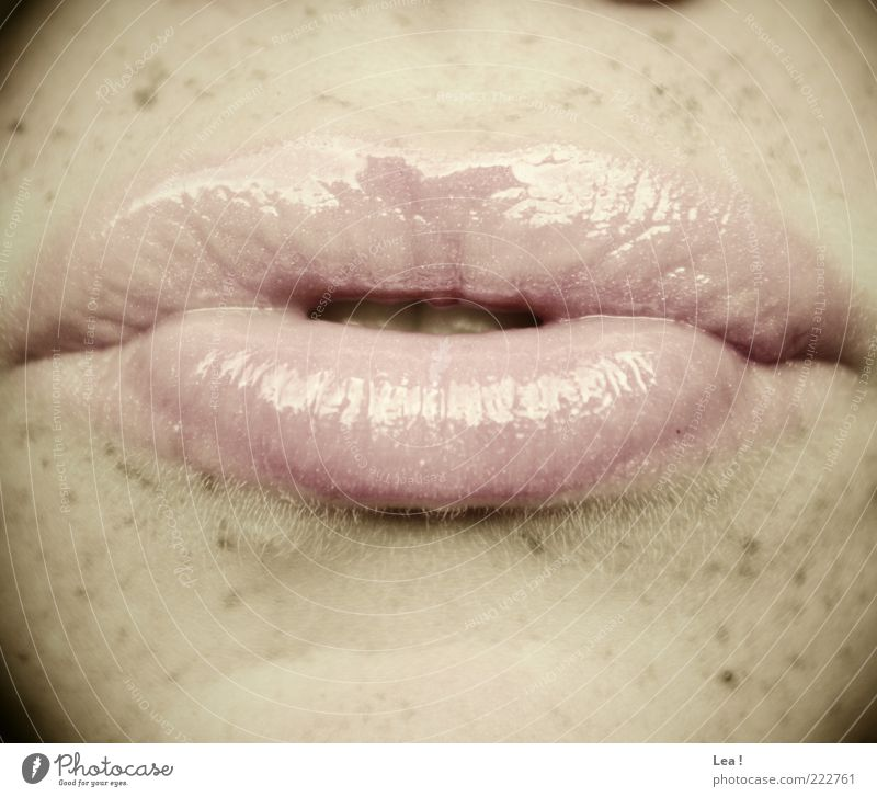 kiss Feminine Mouth Lips Freckles Lipgloss Pink Subdued colour Interior shot Detail Day Light Pout Copy Space bottom Copy Space top