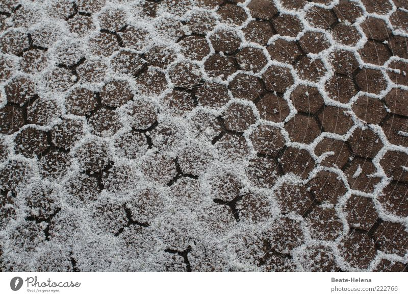 snow honeycombs Stone Gray White Symmetry Winter festival Winter's day non-slip Honeycomb pattern honeycomb technique Snow Pattern Floor covering Paving tiles
