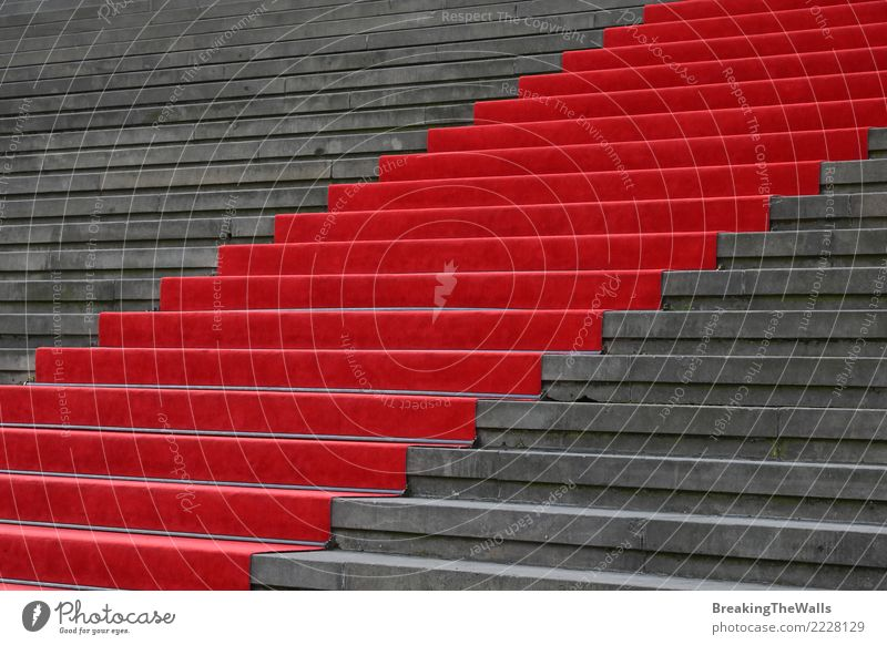 Red carpet over concrete stairs low angle view Town Manmade structures Building Architecture Stairs Tourist Attraction Gray Colour Event way Entrance Ascending