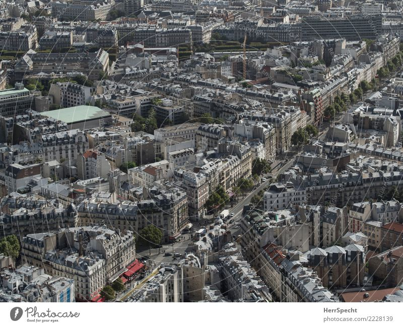 Town Beautiful House (Residential Structure) Far-off places Architecture Building Exceptional Gray Vantage point Capital city Old town Downtown Paris Avenue