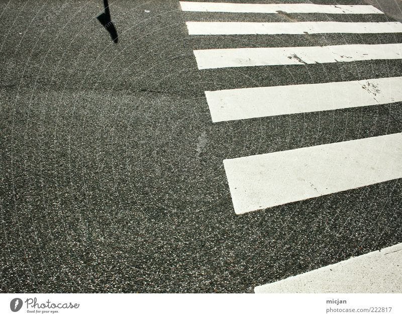 Incognito Unknown destination Deserted Traffic infrastructure Safety Symmetry Lanes & trails Zebra crossing Street Stripe Shadow Asphalt Pedestrian crossing