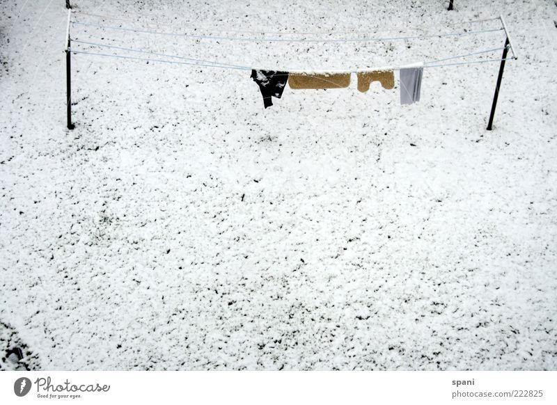 White Winter Snow Grass Garden Bright Pants Shirt Hang Forget Stagnating Clothesline Dawn