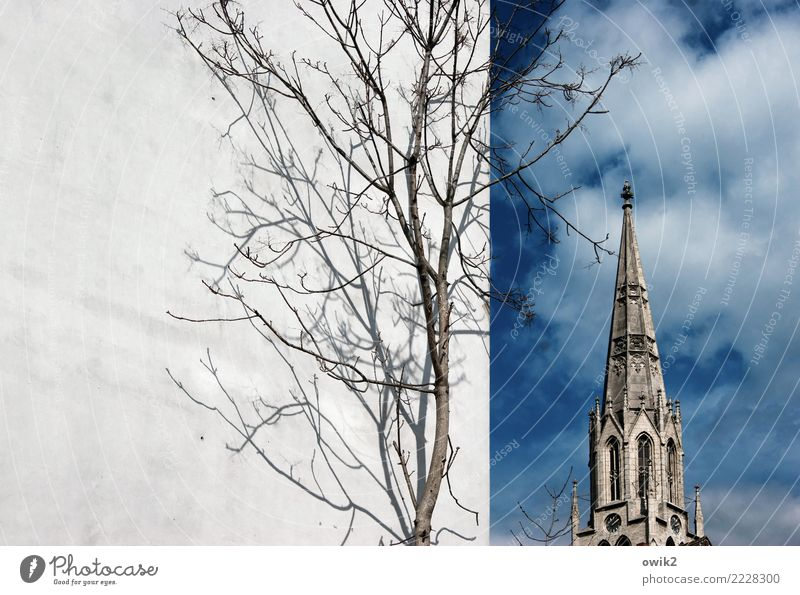 Merseburg Sky Clouds Spring Beautiful weather Tree Twigs and branches merseburg Saxony-Anhalt Germany Small Town Old town Populated Church Manmade structures