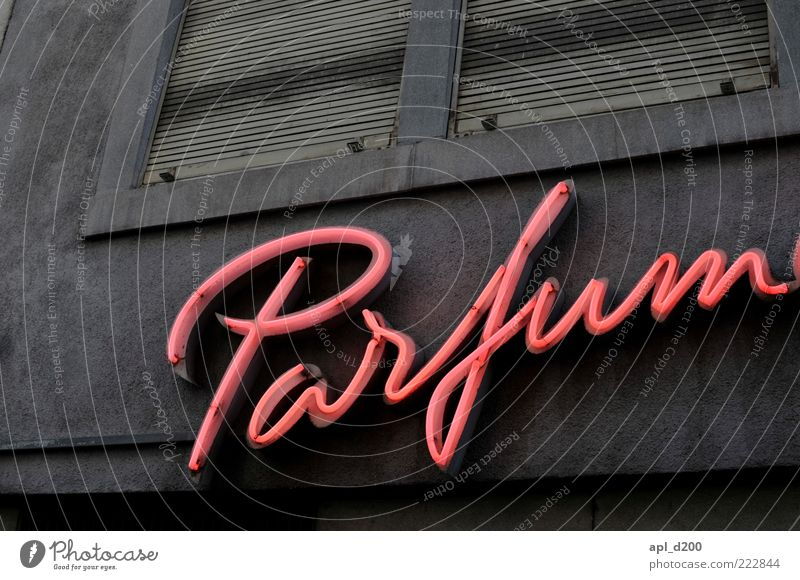 Patrick Süskind Beautiful Perfume House (Residential Structure) Deserted Facade Illuminate Authentic Gray Pink Esthetic Neon sign Colour photo Subdued colour