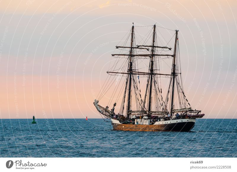 Sailing ship at the Hanse Sail in Rostock Relaxation Vacation & Travel Tourism Water Coast Baltic Sea Navigation Maritime Romance Idyll Nostalgia Tradition