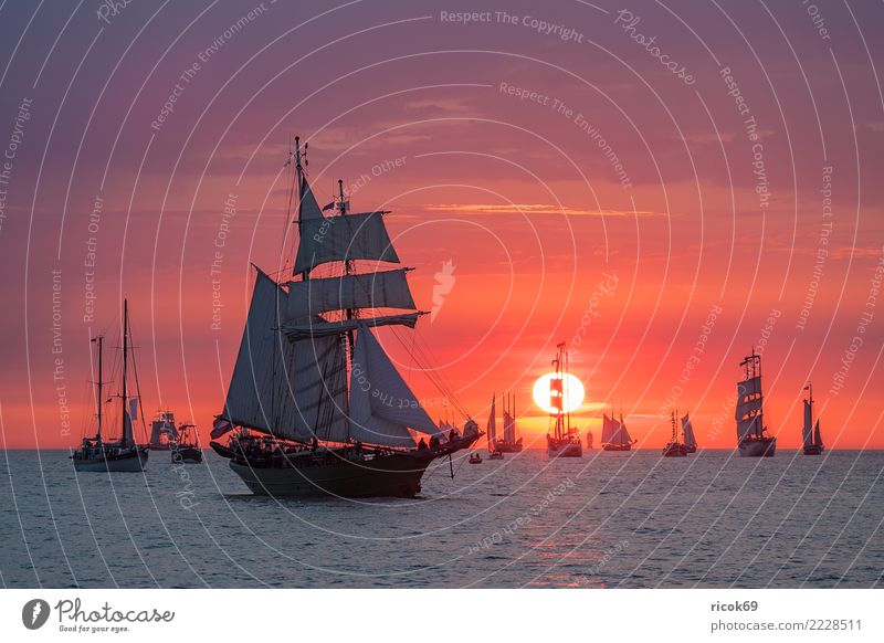 Sailing ships on the Hanse Sail in Rostock Relaxation Vacation & Travel Tourism Water Clouds Coast Baltic Sea Navigation Maritime Romance Idyll Nostalgia