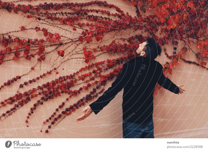 Young man in front of a wall full of red leaves Style Design Exotic Human being Masculine Youth (Young adults) 1 18 - 30 years Adults Art Nature Plant Autumn