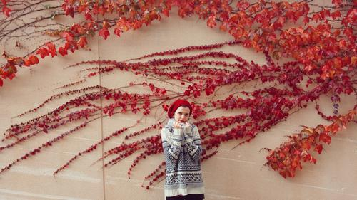 young woman posing near a red ivy Human being Nature Youth (Young adults) Young woman Plant Beautiful Red Leaf Winter 18 - 30 years Adults Life Wall (building)