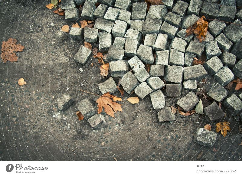 Environment Autumn Lanes & trails Gray Stone Lie Earth Arrangement Floor covering Ground Broken Many Construction site Cobblestones Chaos Autumn leaves